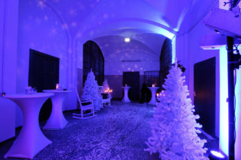 vestibul_winter_web